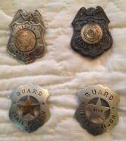 Willard Parker Vanfleet's badges